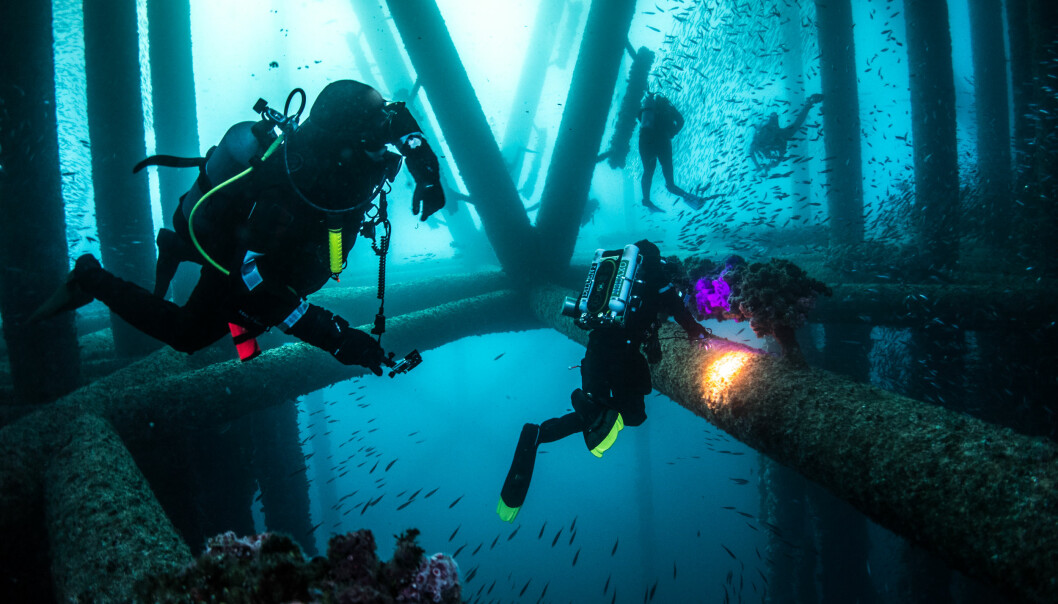 Dykkere under en oljerigg. Foto: iStock/Kirk Wester