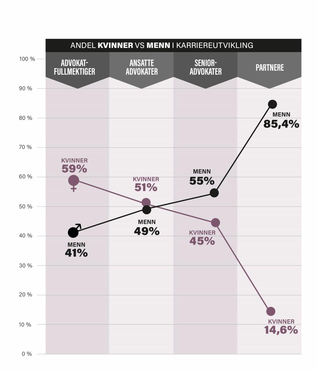 Grafen illustrerer hvor kvinnegapet oppstår. Fram til seniornivå er kjønnsdelingen nærmest jevn, før mennene er i klar dominans på partnernivå. Grafikk: Mediamania.no