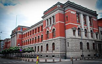 Høyesterett forkastet sexdukke-anke
