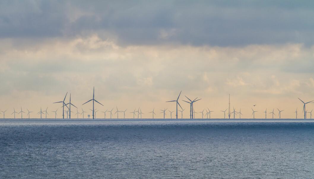 Statkraft uttalte nylig at havvind bør utvikles i andre markeder enn det norske. Her fra havvind-anlegget Egmond aan Zee utenfor kysten av Nederland.