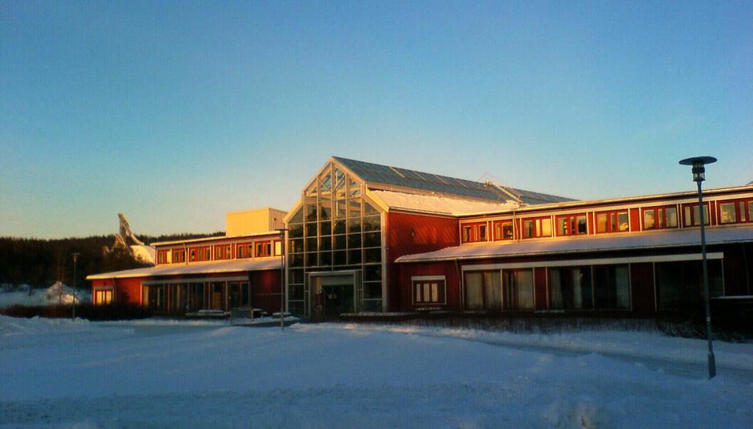 Ifølge studentene er det masterprogrammet i rettsvitenskap ved Universitetet i Tromsø som har best kvalitet.