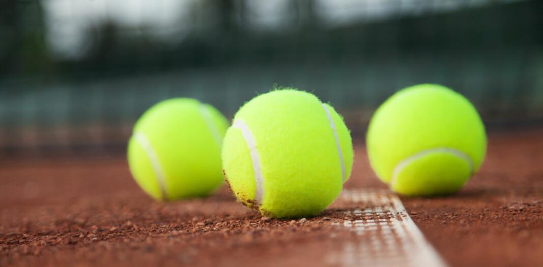 En ulovlig anlagt tennisbane i strandsonen, samt andre tiltak, førte til fengselsstraff for huseier og entreprenør.