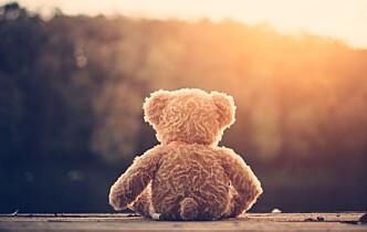 Høyesterett: Biologiske foreldre kan ikke ivareta 6-årings behov ved tilbakeføring fra fosterhjem