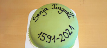 Siste kakefest i Senja tingrett