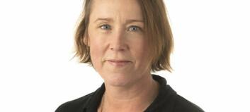 Birgitte Elena Sætre til BDO Advokater