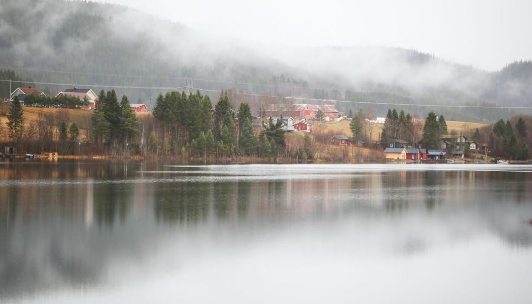 Illustrasjonsfoto fra Selbu, Trøndelag.