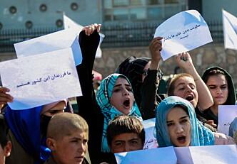 Gir pris til afghanske advokater
